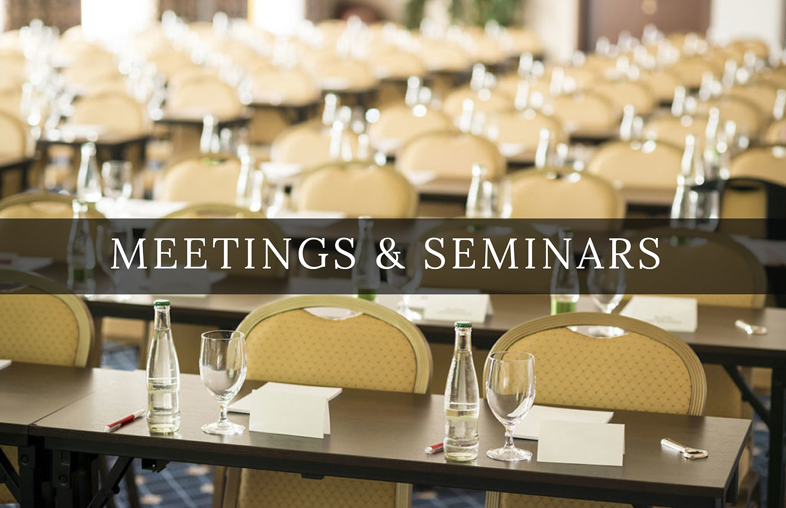 Meetings & Seminars
